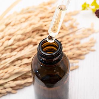 美容発酵成分でお肌の輝きをキープ キメが整い、透明感のあるお肌を保ちます